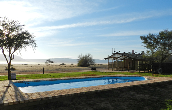 Desert Camp Swimming Pool